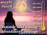 Summer Soul Raising Abundance Campaign