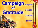 2017 Campaign of Gratitude