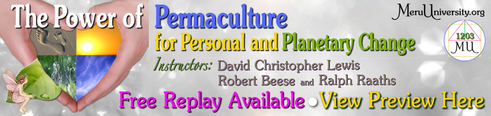 The Power of Permaculture