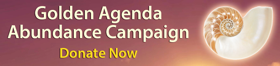 Golden Agenda Fund Camp