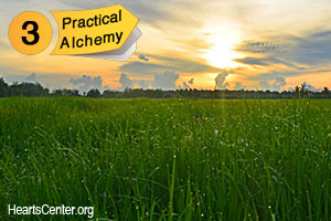 Practical Alchemy #3—Use the Sun for the Sun Knows All; Keep Things Natural and Do No Harm