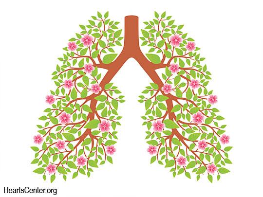 Prana Breathing Dynamics