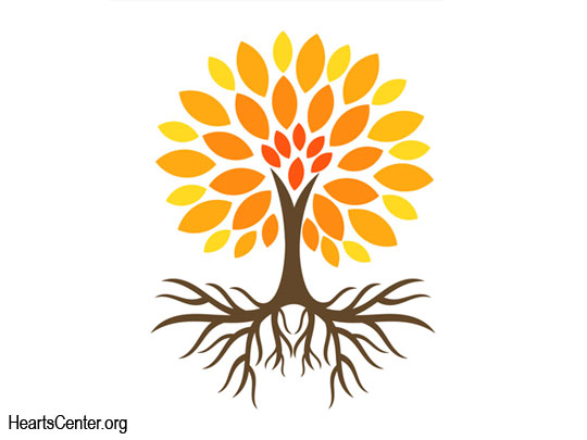 The Wisdom Teachings from the Past Serve as the Roots of the Tree of Today's Teachings (VIDEO)