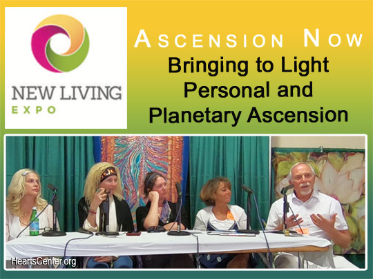 Excerpts of David's Sharing at the Ascension Now Panel – Bringing to Light Personal and Planetary Ascension (VIDEO)