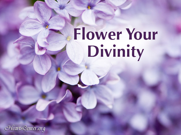 Each Day is an Opportunity for the Flowering of Our Divinity (VIDEO)