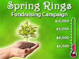 Spring Rings Fundraising Campaign